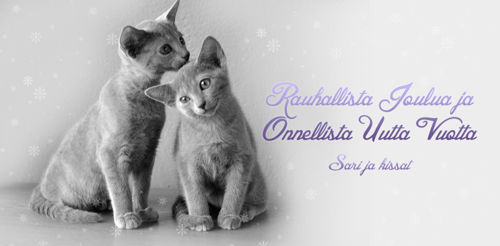 zarin_joulukortti2015_fi